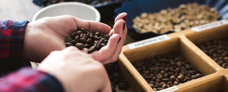 Café Santa Monica ensina como identificar o sabor e a qualidade do café