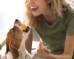 Como cuidar de seu cão na pandemia